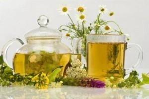 Народная медицина от кашля: травы и ягоды